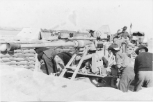 Man Handling A Bofors