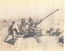Bofors Crew In Action, Suez 1941