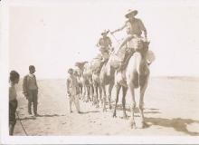 Camel Troop