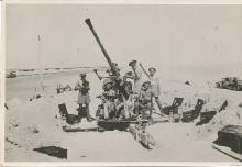 Gun Crew At Suez 1941