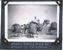 Camel Supply Train