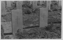 WW1 Headstones