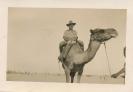John Campbell Camel Crew, Gaza, 1941
