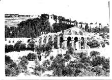 Gardens of Gethsemene