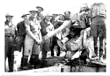 Training On Heavy AA Gun