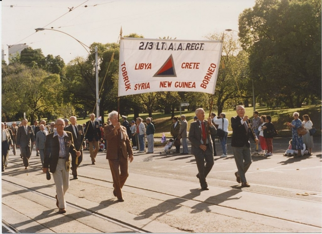 1993 Annual March